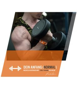 Trainingsplan für Anfänger normales Level